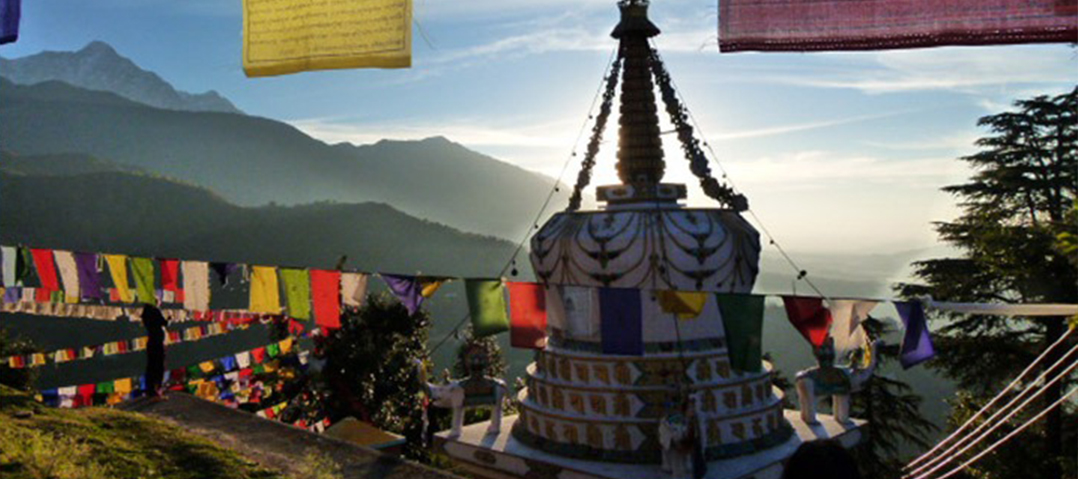 Norsang Journeys McLeod Ganj Temple Kora