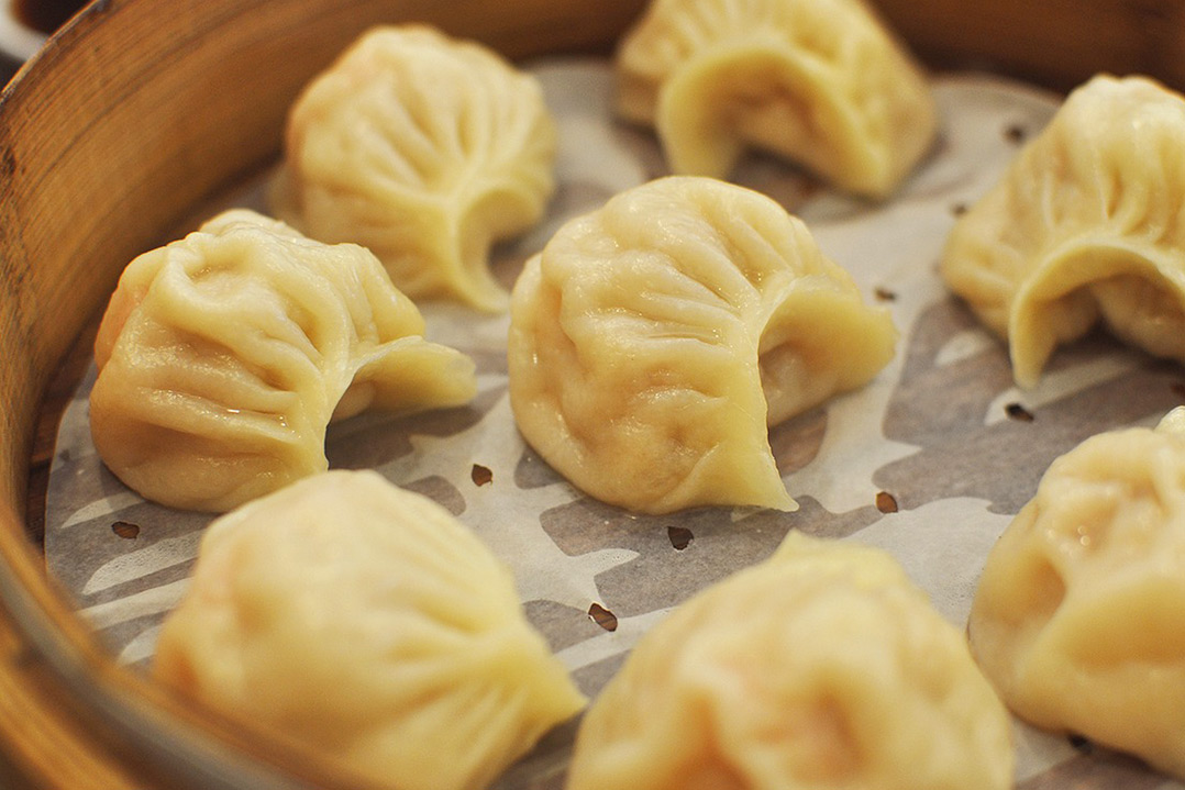 Norsang Journeys Tibetan Momos